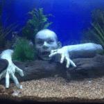 Zombie aquarium decoratie